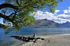 Lone Traveller (phoenixfelices) Tags: awesomeearth nikon nikonlove nikonphotography nikond810 nikonphoto nikonaustralia nikonnewzealand mynikonlife d810 wideangle newzealand lonelyplanet nz nztravel nztrip travelnz explorenewzealand photography photooftheday picoftheday trees bluesky blue sky landscape landdscapes landscapephotography escape globalcapture nature natgeo naturephotography natgeotravel water lake lakewakatipu queenstown southisland travel travellife traveller outlooktraveller visitnz holiday serenity shotaward colors wanderlust scenery scenic beautiful picturesque ngc
