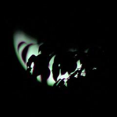 Lua (181) (valdircodinhoto) Tags: lua luna moon noite noche night ceu cielo sky black darkness oscuro escuro negro brasil brazil canon rebel eos t5i lens satélite natural luar brilho 2017 lunar cheia fundo preto redondo círculo textura abstrato minimalismo curvas ao ar livre serenidade moldura de foto mar monocromático llena brasília df 75300mm