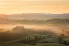 Tuscany Portrait