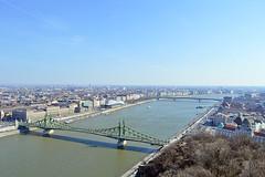 Vue sur le Danube du Mont Gellért