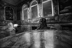 Boton Public Library, Ma (mcleod.robbie) Tags: black white tone moody library boston public fun book lion statue reflection night contrast window