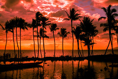You Talk Way Too Much (Thomas Hawk) Tags: grandwailea hawaii maui wailea waldorfastoria waldorfastoriagrandwailea beach clouds humuhumu humuhumunukunukuapuaa palmtree restaurant sunset tree fav10 fav25 fav50 fav100