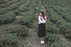 B73A0993 (duongbathong_qtkd) Tags: