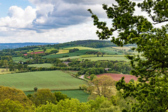 Devon landscape (Keith in Exeter) Tags: devon landscape killerton hill tree field farm countryside patchwork cloud outdoor nationaltrust england english
