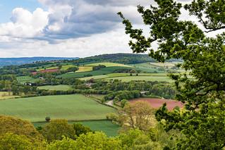 Devon landscape