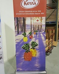 Kerr's Winter Candy Retractable Banner Stand premium (Signworld Canada) Tags: banner stand signworld trade show display canada vinyl printing retractable kerrs winter xmas christmas candy
