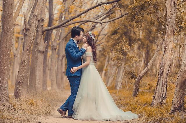 33844316644 ef6578d886 z 台南婚紗景點推薦 森林系仙女的外拍景點