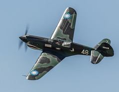 P40 Top View (4myrrh1) Tags: maxwell 2017 al alabama military classic ww2 wwii aircraft airplane aviation airshow airplanes airport airforce afb