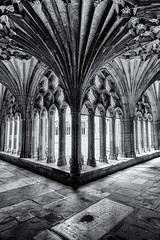 In the cloister (David Feuerhelm) Tags: nikkor monochrome blackandwhite bw contrast cloister corner pillar building arches cathedral canterbury old kent england historic history nikon d750 wideangle perspective silverefex