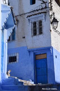 Blue Chefchaouen (Morocco)