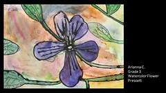 prescott-watercolor-flower-arianna