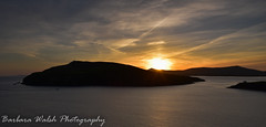 Sunset, Dingle Bay (Barbara Walsh Photography) Tags: sunset dingle kerry ireland atlantic way sea water hills fungie