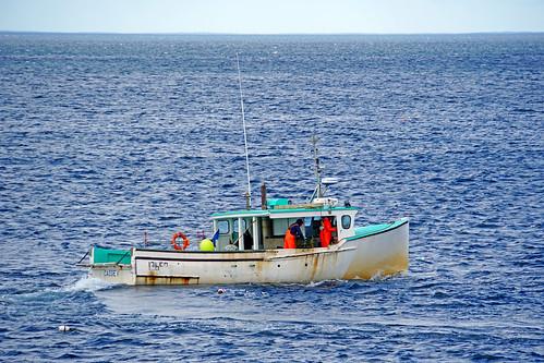 prospect sony a6300 ilce6300 18200mm 1650mm mirrorless free freepicture archer10 dennis jarvis dennisgjarvis dennisjarvis iamcanadian novascotia canada lobster fishing boat highheadtrail village