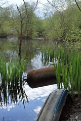 Shameful (Adam Burke1) Tags: rubbish pond dumped shameful discarded
