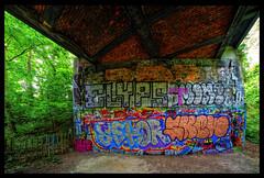 1XES9087_tonemappedVSSFP (jmriem) Tags: jmriem colombes 2017 graffiti graffs graff street art