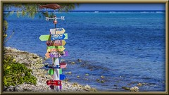 Can't Get There From Here! (Sugardxn) Tags: garypentin cayman grandcayman canon canon7d canoneos7d sugardxn island sea beach surf blue directions sign arrows colorful outdoor whimsical