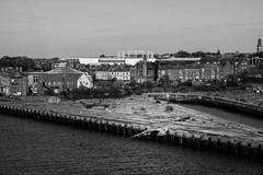Photobomber (John fae Fife) Tags: fujifilmx noiretblanc xe2 monochrome bw nb seagull blackandwhite northshieldsandferry