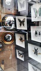 20170506_1921 miroir de sorcières -  rue du roi de Sicile Paris (ixus960) Tags: paris france capitale ville mégapole