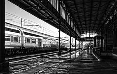 La stazione (Fabio Pratali LI) Tags: livorno bn treni stazione