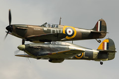 Spitfire and sea hurricane (Nick Collins Photography, Thanks for 2.5 million v) Tags: n3200 mk1 spitfire aircraft airshow aviation flying military ww2 canon 7dmk2 500mm sea hurricane royal navy raf old warden shuttlesworth hawker supermarine merlin rolls royce british fighter