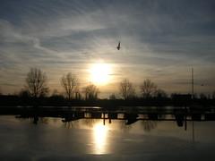 winter marina (achatphoenix) Tags: marina portdeplaisance jachthafen weener rheiderland eastfrisia water wasser eau winter trees reflection spiegelung sunset