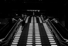 Up (maekke) Tags: japan kanazawa trainstation publictransport highcontrast symmetry architecture stairs man night pointofview pov light fujifilm x100t 35mm streetphotography 2017 travelling tourist bw noiretblanc silhouette urban
