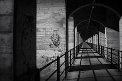 welcome! @ Viaduc du Grandfey . Fribourg (Toni_V) Tags: m2404018 rangefinder digitalrangefinder messsucher leica leicam mp typ240 type240 35lux 35mmf14asph 35mmf14asphfle summiluxm perspective bw blackwhite monochrome sep2 silverefexpro2 niksoftware bridge viadukt viaducdugrandfey grandfey fribourg switzerland schweiz suisse svizzera europe dof bokeh graffiti streetart ©toniv 2017 170424