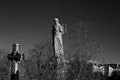 _IAW9357 (IanAWood) Tags: lbofbrent london londoncemeteries nikkorafs58mmf14g nikondf walkingwithmynikon willesden willesdennewcemetery