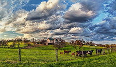 IMG_8343-44Ptzl1scTBbLGER (ultravivid imaging) Tags: ultravividimaging ultra vivid imaging ultravivid colorful canon canon5dmk2 clouds sunsetclouds scenic rural vista pennsylvania pa panoramic fields farm barn cows evening spring nearsunset