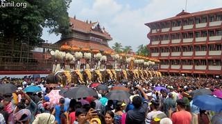 Thrissur Pooram 2017 - 03