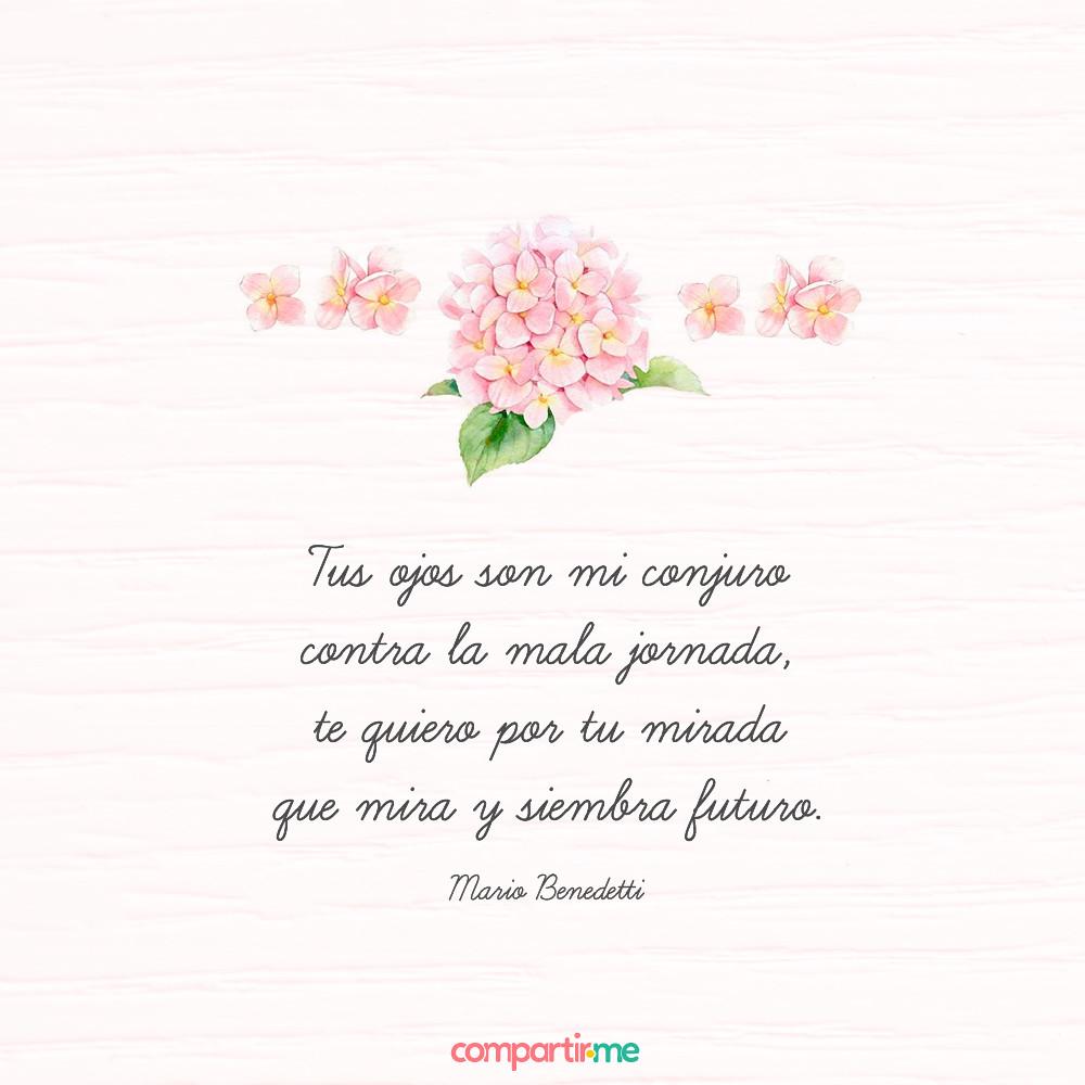 Imágenes con los mejores versos de amor y flores hermosas gratis Frasesdeamorpro Tags