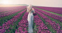 ~ lovely ~ (Miss Froggi Photography) Tags: fields tulips outdoor beauty blond girl woman dress romance romantic colorful beautiful