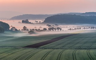 *Valley of the Morning Mist II*