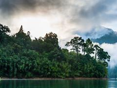 Morning backlight (SLpixeLS) Tags: asia asie thailand thaïlande khao sok lake lac landscape paysage national park parc forest forêt jungle morning matin mist brume contrejour backlight sunrise leverdesoleil