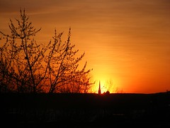 ** Le clocher dans le soleil couchant ** (Impatience_1(retour progressif)) Tags: coucherdesoleil sunset ciel sky clocher belltower arbre tree impatience longueuil canada orange saveearth supershot coth absolutelystunningscapes coth5 abigfave sunrays5 fantasticnature alittlebeauty fabuleuse 100commentgroup 100com500views25favs