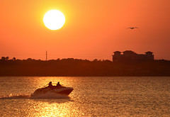 Follow that bird. (Jill Bazeley) Tags: speedboat motorboat speed motor seadoo intracoastal waterway indian river lagoon merritt island brevard county space coast florida pelican sunset 300mm nikon d7200
