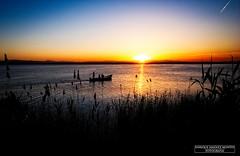 DSCF1891 (Enrique Jiménez Montes) Tags: paisaje barca landscape sunset atardecer valencia albufera 14mm fuji