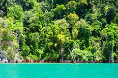 This is a lake (SLpixeLS) Tags: asia asie thailand thaïlande khao sok lake lac landscape paysage polariser polarisant filter filtre national park parc surathani