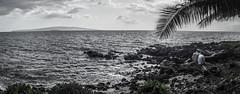 DSC03991.jpg (jaғar ѕнaмeeм) Tags: kihei hawaii unitedstates us wailea maui marriott luau