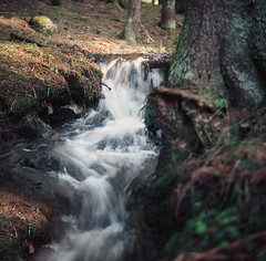 Little forest stream. Taken with a Rolleicord 1a TLR medium format from 1936 (Explored) (steffos1986) Tags: norway nature vintage rolleicord landscape water river stream creek waterfall forest norge norwegian europe scandinavia norwegen noruega countryside explore tlr mediumformat old antic 120 kodakektar rolleicord1 antique film analog ektar100