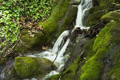 Flowing Water (panos_adgr) Tags: macedonia greece green water sony a6000 vegetation rocks stones macedoniagreece makedonia timeless macedonian macédoine mazedonien μακεδονια