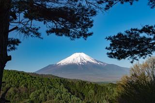 2017 May Fuji