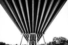 Pennybacker Bridge (Thomas Hawk) Tags: 360bridge america austin pennybackerbridge texas usa unitedstates unitedstatesofamerica bridge bw fav10 fav25 fav50