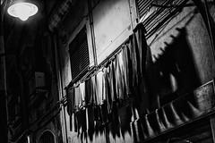 Laundry Night (Stefano Avolio) Tags: genova genoa caruggi caruggio alley vicolo stefanoavolio glimpse laundry bucato notturno notte night nighty bw blackwhite blackandwhite biancoenero bianconero monocromo downtown centrostorico