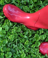 My Red Boots & Greenery! (☁☂It's Raining, It's Pouring☂☁) Tags: odc oppositesattract red green boots wellies sweetviolet leaves inthebackyard