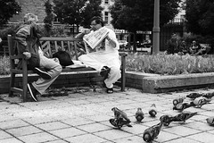 Two friends (Papaye_verte) Tags: friends amis streetphotography pigeons montréal québec canada