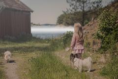 girl & friends ❤️ (D.Sinkute) Tags: sea fog mist sjø nature gamta dogs hund girl jente canon photography lindås norge hordaland norway daylight papillon