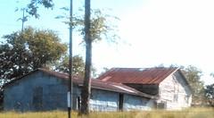 17042604324624_l (ashantimcgrue) Tags: lowdef portra warm provia forest