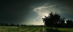 Into the dark side - Vers le coté obscur (Philippe Meisburger Photo) Tags: panorama tree trees arbre arbres cloud clouds nuages nuage ombre chinoise shadow sun soleil storm orage cumulonimbus light lumière ambience darkness obscurité dark sombre summer ete summertime hautrhin alsace grand est france europe philippe meisburger 2016