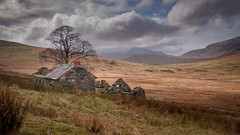 My little place .... (Einir Wyn Leigh) Tags: landscape detail dwelling history beauty snowdonia tree clouds outside mountains wales uk nikon hill exposure path camera nikkor